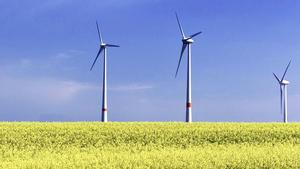 Externer Link: Sachlicher Teilplan Erneuerbare Energien